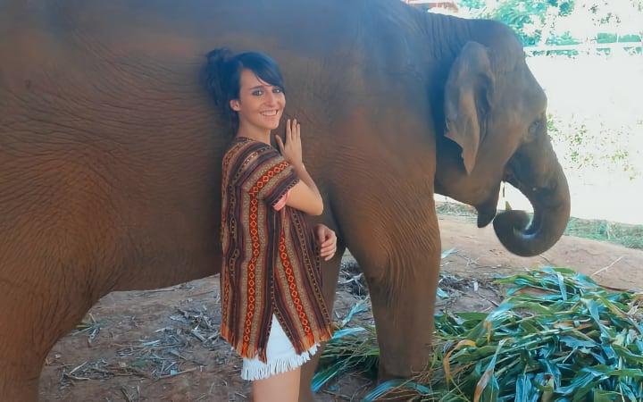 Excursion al Elephant Jungle Sanctuary Camp de Chiang Mai