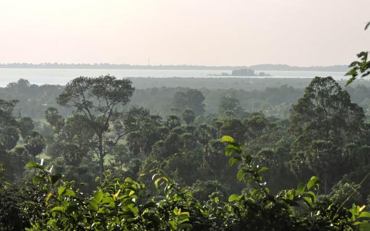 Vistas de la jungla desde el templo Phnom Bakheng