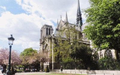 Isla de la citè y alrededores París