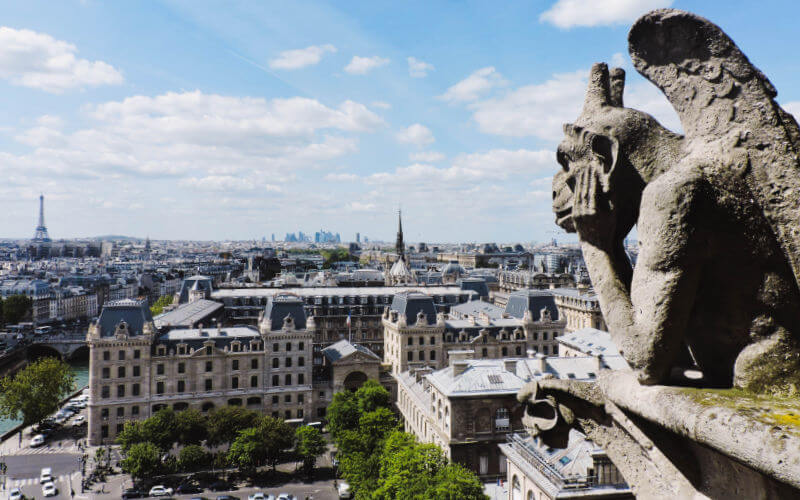 Vistas desde las torres de Notre Dame