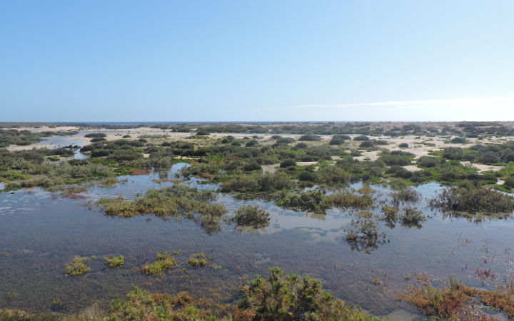 Las Lagunillas Isla de Lobos