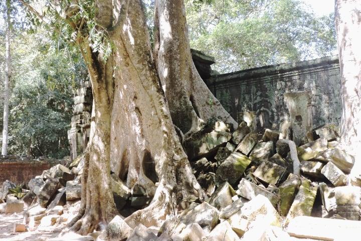 Ruinas de Ta Prohm