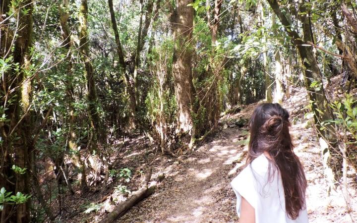 Sendero número 5 de La Gomera