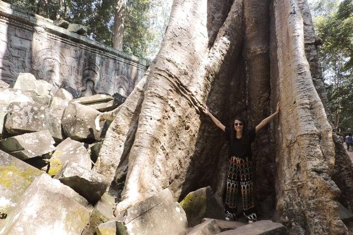 Arbol gigante en Angkor