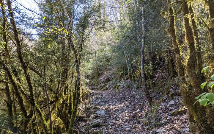 Rutas andando por el cañon de Añisclo