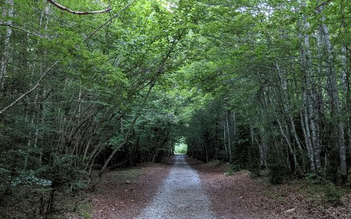Inicio del camino para subir a los Llanos de La Larri por la pista